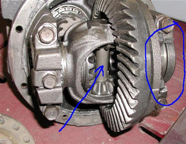Differential Spotters Guide